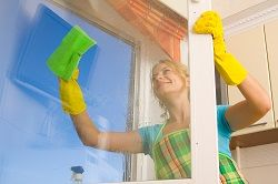 domestic cleaner nw1